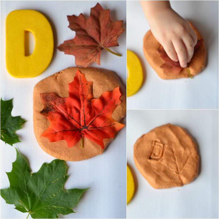 D is for Deciduous - Fall Kids Activity