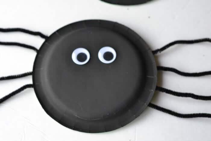 eyes on spider