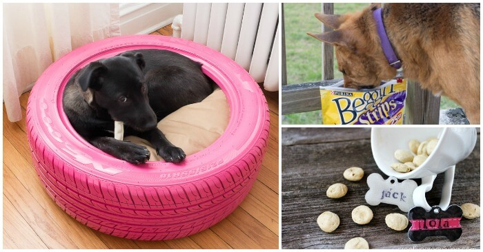 & 10 Christmas Gift Ideas for Your Dog - Glue Sticks and Gumdrops