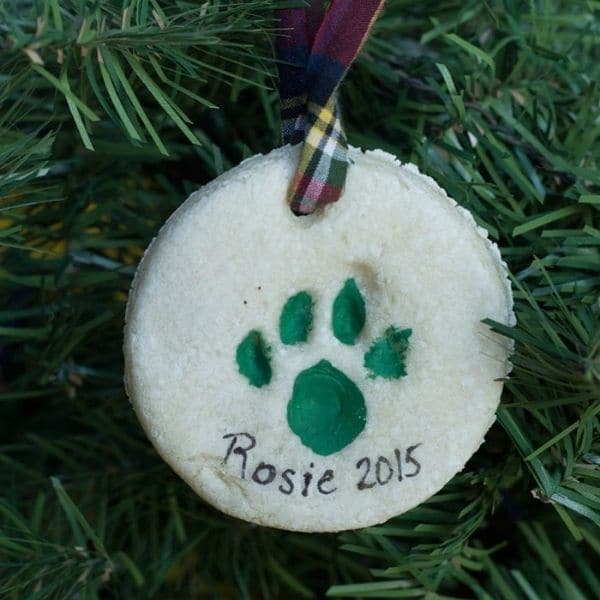 cat paw print ornament
