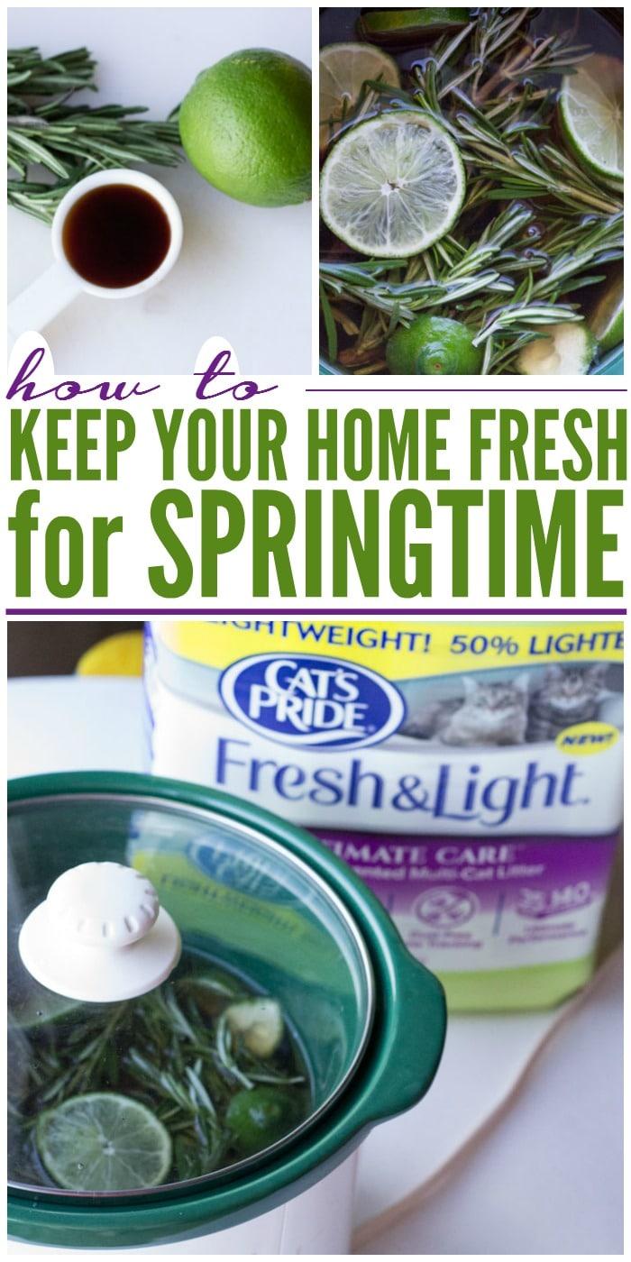 springtime-fresh