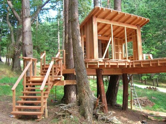 treehouse for kids 9