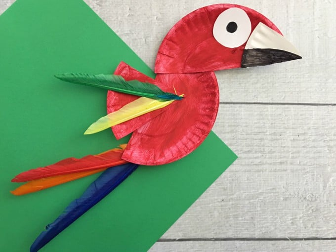 Ta-da! There you have your super cute paper plate parrot! & Parrot Paper Plate Craft for Kids - Rainforest Craft Idea