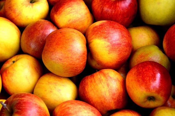 bob for apples