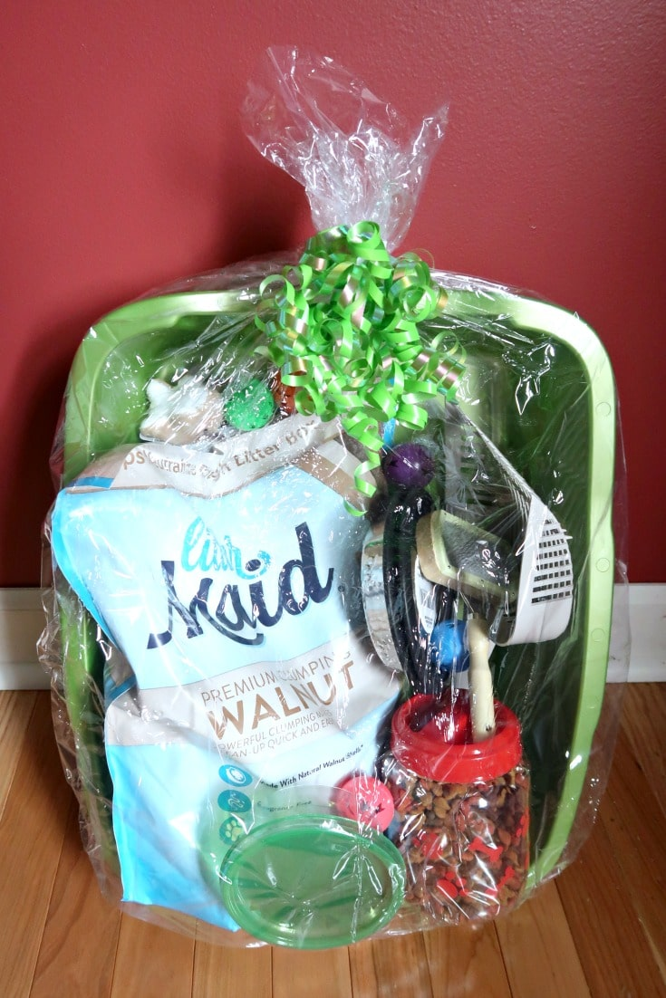 Gift Basket Idea for First Time Cat Owners