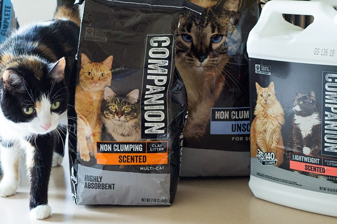 Companion Brand Cat Litter Products