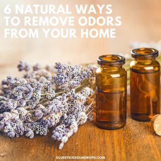 6 Natural Ways to Get Rid of Bad House Smells
