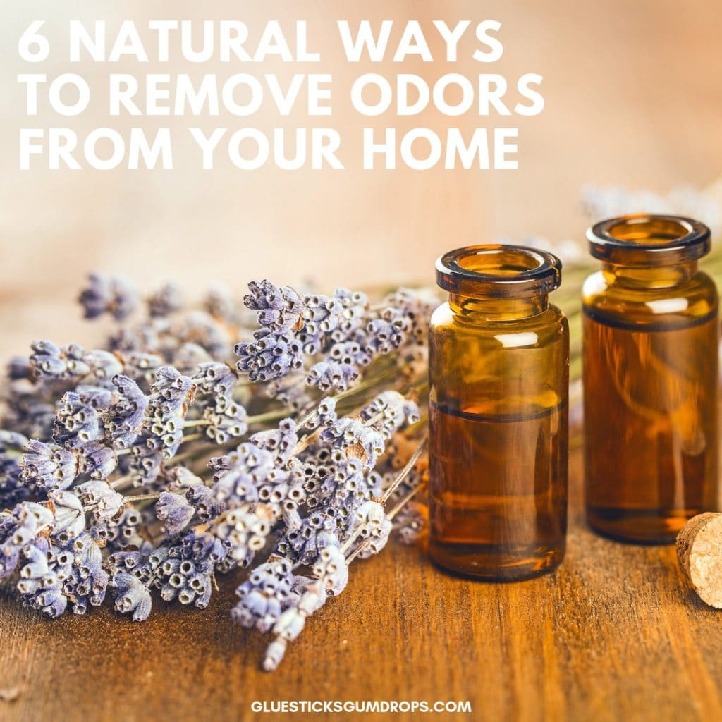 Get Rid Of Bad House Smells Naturally With These 6 Tips