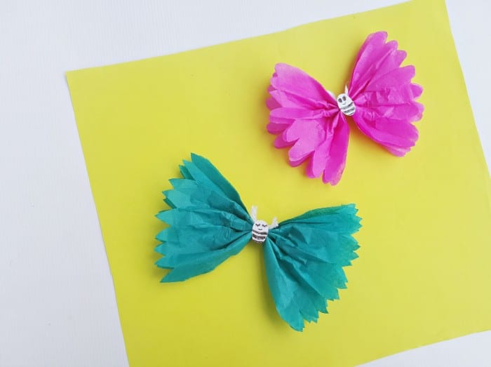 craft tissue butterfly