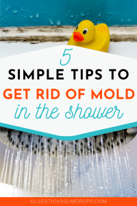 5 Simple Tips to Get Rid of Mold in the Shower