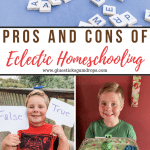 Eclectic Homeschooling: What Is It and Is It Right for Your Family?