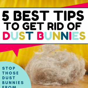 5 Best Tips to Get Rid of Dust Bunnies in Your Home