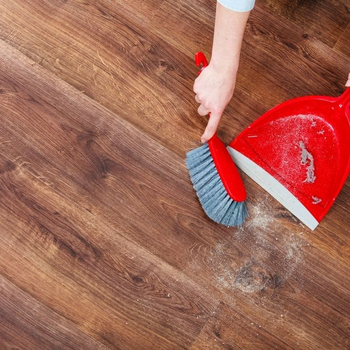 5 Best Tips To Get Rid Of Dust Bunnies