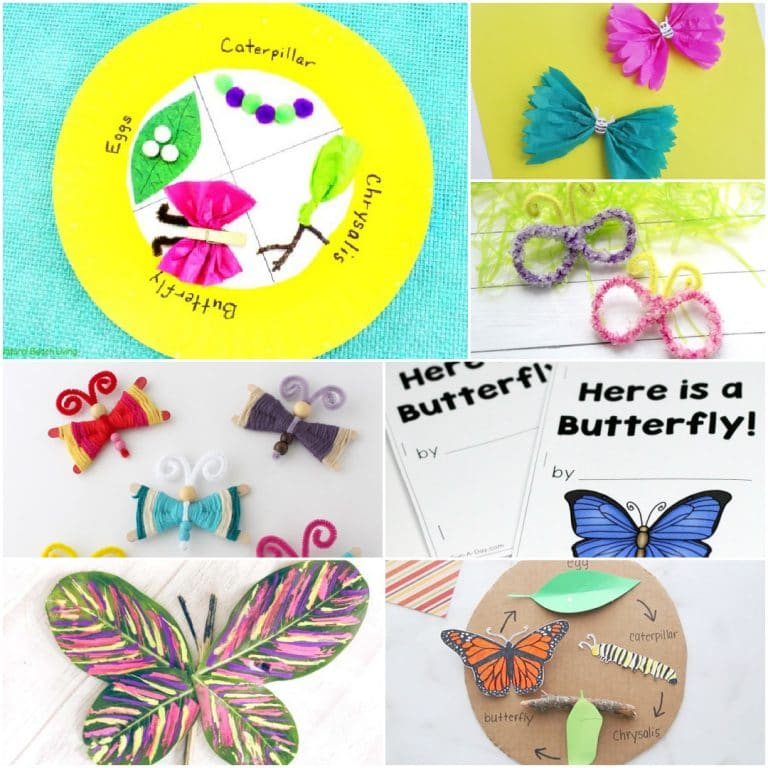 Butterfly Unit Study Ideas for Homeschool
