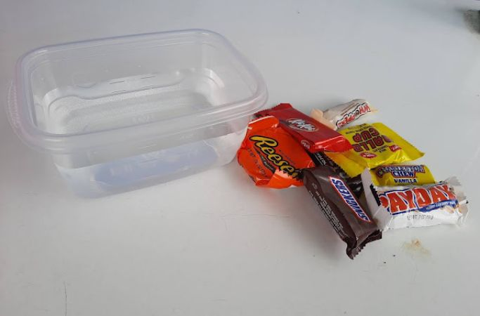 sink or float experiment with halloween candy