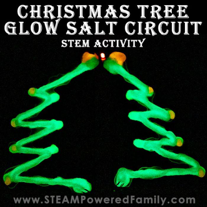 christmas tree glow in the dark salt circuit